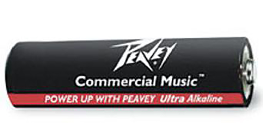 Peavey AA Batteries