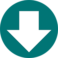 Digital Download Icon